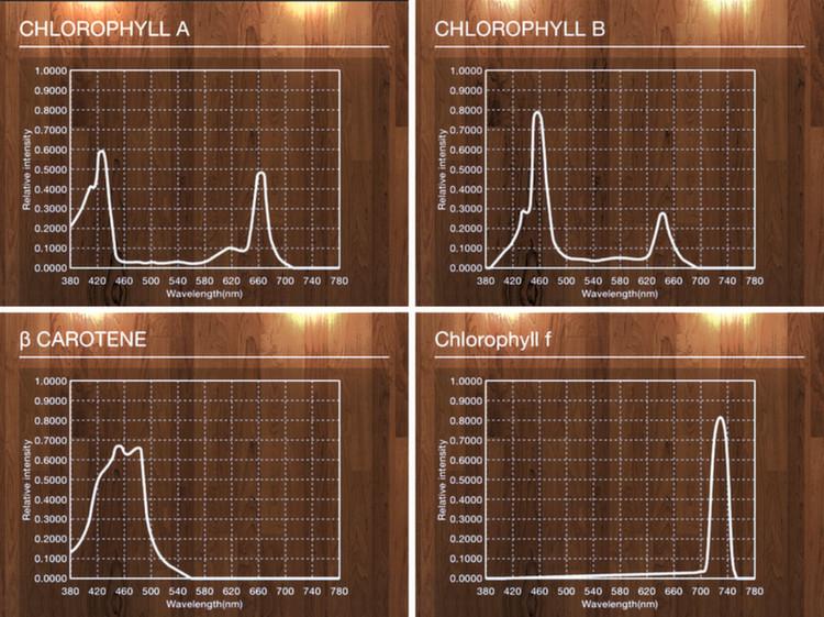 Spectrum Genius Agricultural Lighting für Ermittlung der Effizienz von Pflanzenbeleuchtung